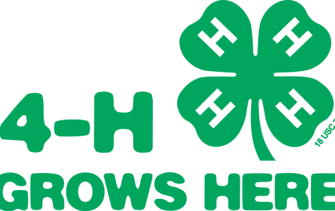 Why You Should Join 4-H