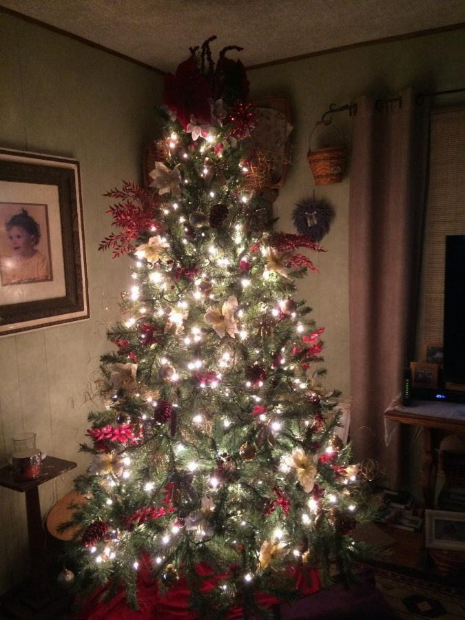 Christmas Tree at Lindsay Ryans moms house