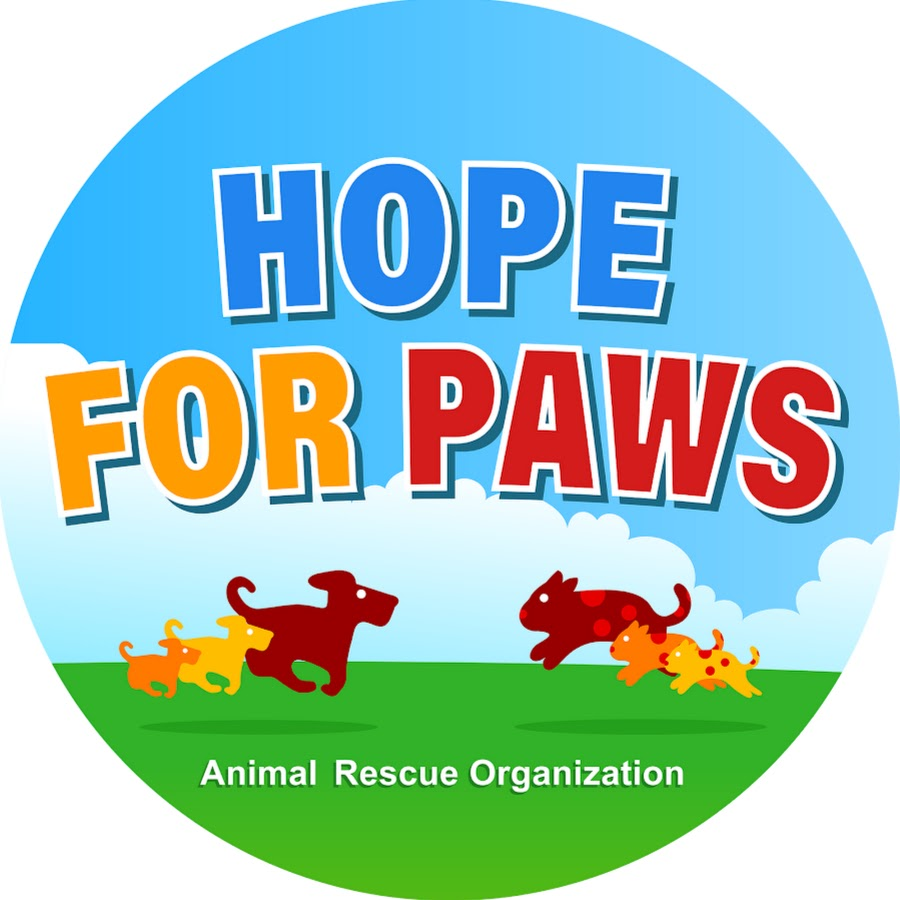 Hope+For+Paws+going+dumpster+diving+to+save+kittens+thrown+like+trash.